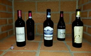 Degustace Via Vini - 1914281 - dekantace červených vín
