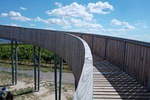 Dovolená na jižní Moravě 2020 - 1914364 - Cesta až do nebe... a s výhledem na vinice