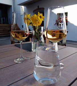 Dovolená na jižní Moravě 2020 - 1914366 - A další vzorky dobrého vína
