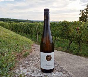 Dovolená na jižní Moravě 2020 - 1914352 - Rodinné vinařství Zdenek Polach