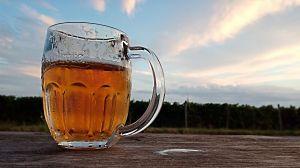 Dovolená na jižní Moravě 2020 - 1914355 - Ani pivo s výhledem na vinice nechutná špatně